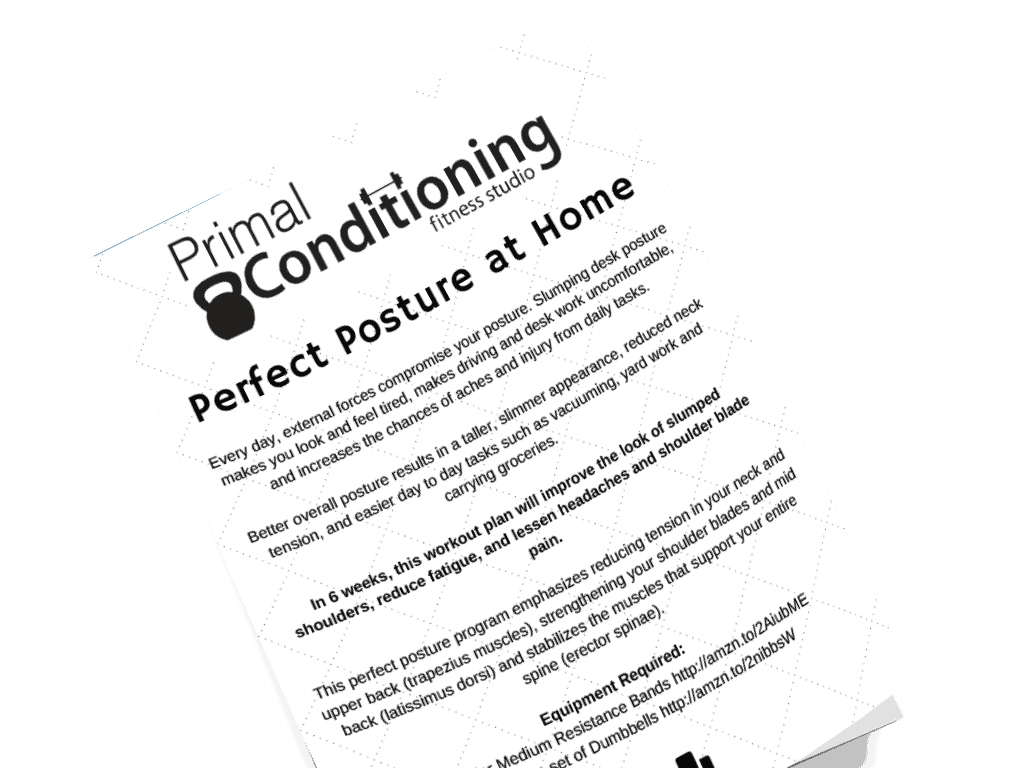 Primal Conditioning free download perfect posture
